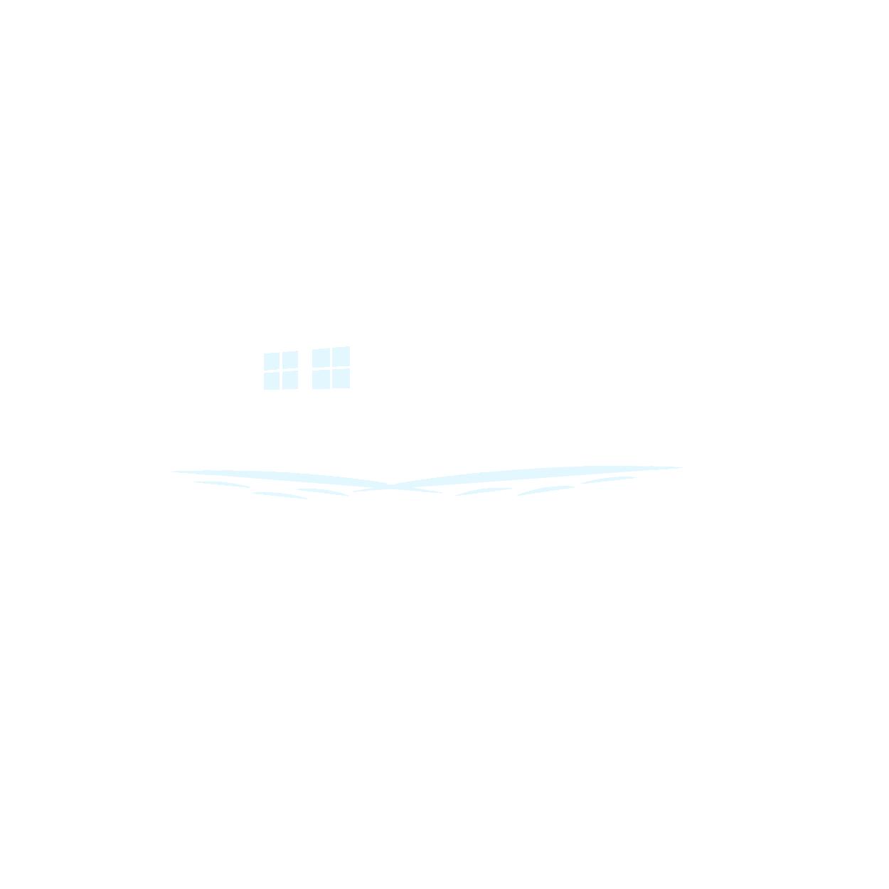 Vidular